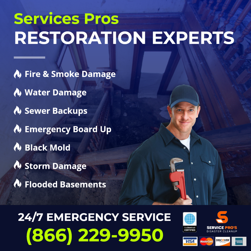 restoration company Hollywood
